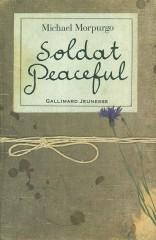 soldat peaceful.jpg